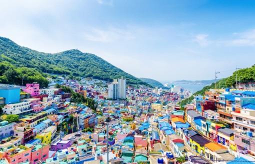 Đôi cánh thiên thần ở Busan