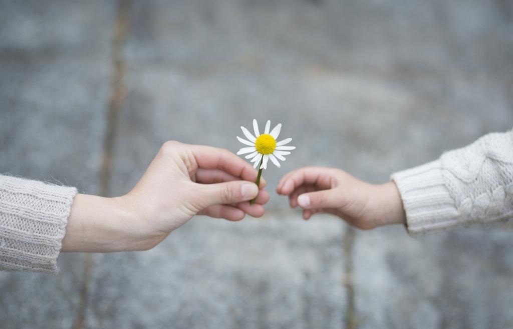 Lòng biết ơn và sự đương nhiên