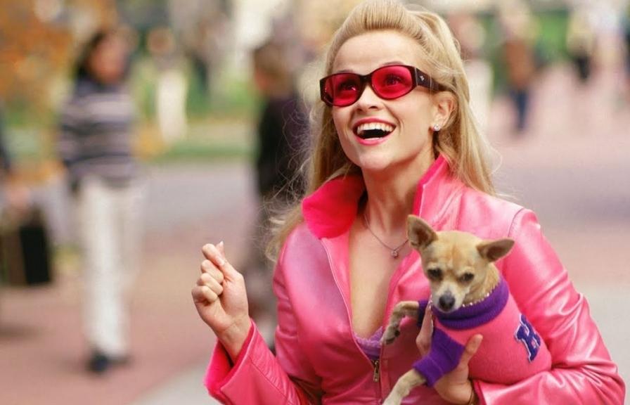 Nhờ thời trang đặc biệt này, 'Legally Blonde' trở thành 'di sản' khiến nhiều sao Hollywood bắt chước