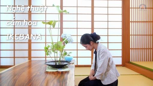Trải nghiệm văn hóa Nhật Bản qua nghệ thuật cắm hoa Ikebana